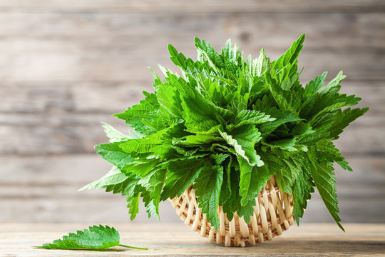 Young nettle leaves in basket on wooden rustic background, stinging nettles, urtica.