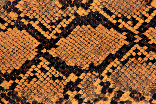natural yellow snake leather background