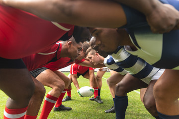 Male rugby players ready to play rugby match in stadium