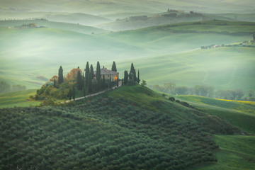Fond de hotte en verre imprimé Olive Fantastic sunny spring field in Italy, tuscany landscape morning foggy famous Cypress trees