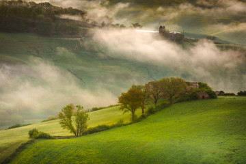Wall Murals Khaki Fantastic sunny spring field in Italy, tuscany landscape morning foggy famous Cypress trees