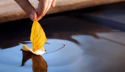 yellow autumn leaf ship in children hand, boy play in water pond