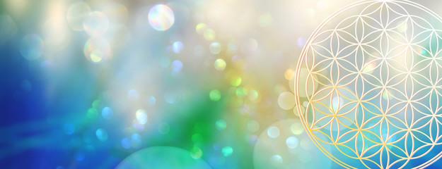 Banner: Blume des Lebens erstrahlt aus der Tiefe eines  glitzernden Lichterfelds