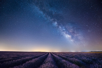 France, Provence, Lavender fields with milky way at night