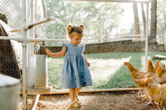 Little Girl in Chicken Coop