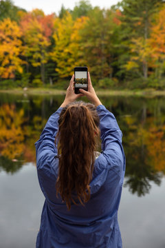 Woman's hands holding phone and photographing a beautiful forest in fall.
