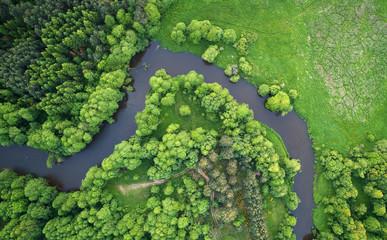 Aerial landscape - wild river in summer
