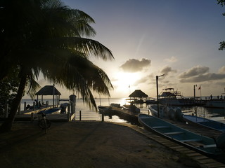 Belize Caye Caulker Cay Corker Insel Mittelamerika Zentralamerika Sonnenuntergang Palme Kokospalme Barrier Reef Riff Karibik Karibisches Meer Strand Boot Anlegestelle Schiff Tourismus geh langsam go