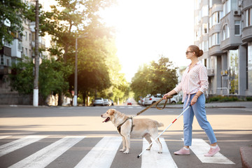 Young blind woman with guide dog crossing road Wall mural