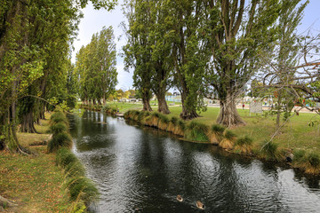 Tree lined river in Christchurch, New Zealand