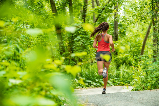 Healthy active lifestyle woman runner jogging in forest path sport athlete training outdoor in green nature. Fit person working out.