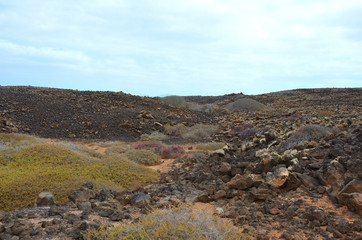 Desert Volcanic Landscape of Isla de Lobos in Canary Islands