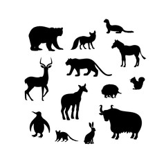 Set of animal silhouettes. Bear, fox, weasel, impala, tiger, zebra, penguin, okapi, echidna, squirrel, quoll, hare, yak