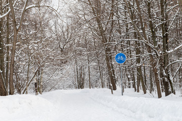 bicycle path in winter forest