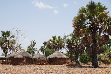 Small village with mud huts in the savanna of Togo, West Africa