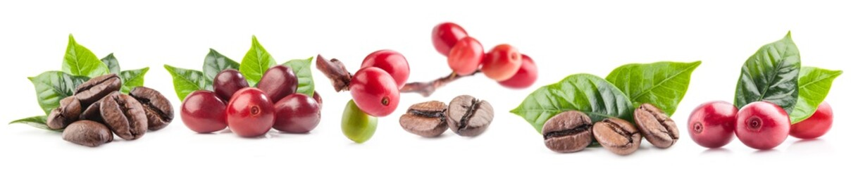 Collection of Red coffee beans isolated on white background