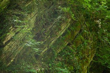 Door stickers sheer rock covered with moss