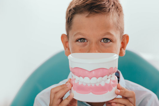 Cute boy showing model of teeth in front of his mouth,selective focus on eyes. Funny advertising child teeth treatment