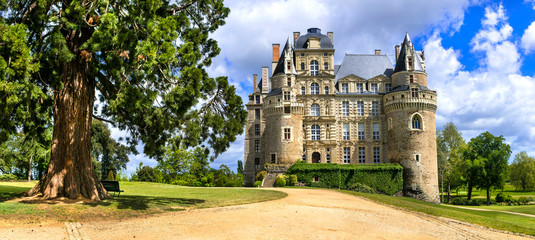Famous castles of Loire valley - beautiful romantic Chateau de Brissac, Landmarks of France