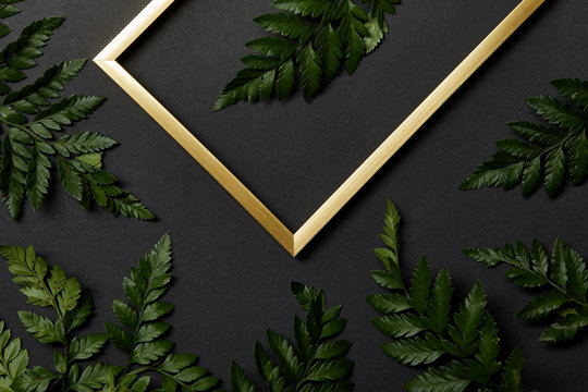 top view of golden frame on black background with fern leaves