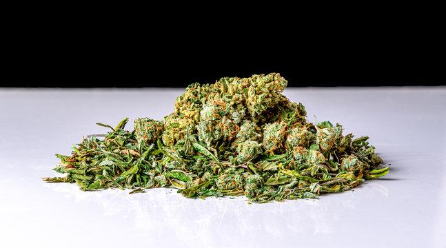 Medical and Recreational Marijuana and Marijuana Shake
