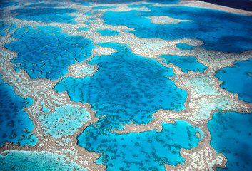 High angle view of Great Barrier Reef in Pacific ocean