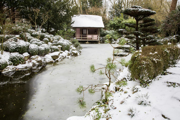 View of tea house in Japanese style garden
