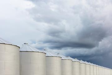 Rows of grain silos