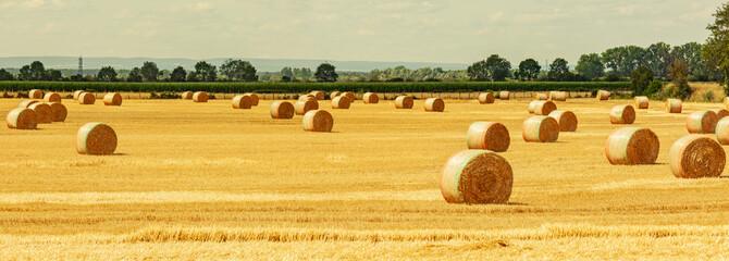 Fotoväggar - Strohballen auf dem Feld