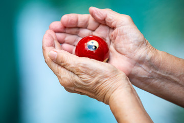 Senior woman's hands holding and praying a black and white Yin Yang religious symbol on red ball in Taoism in bokeh blue swimming pool background, Asian Body language feeling, Religion concept