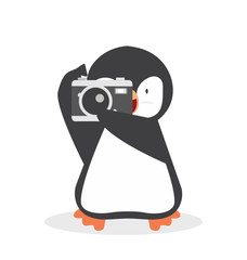 Cute Penguin with a camera