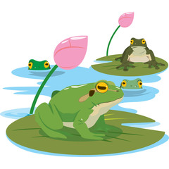 green frog in different pose. Vector illustration.