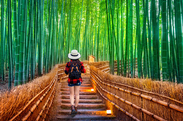 Poster Bamboo Woman traveler with backpack walking at Bamboo Forest in Kyoto, Japan.