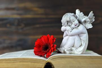 Little guardian angel sleeping on the book