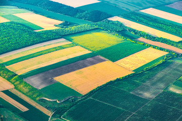 Aerial view of fields and crops