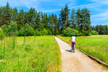 Young woman riding bike in forest on cycling way around Tatra Mountains on sunny summer day, Poland