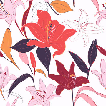 Red lilies hand-drawn background. Vector summer flowers, isolated botany pattern. Garden bloom fabrics, flowery wrapping paper deign. Leaves and petals blossom graphics.