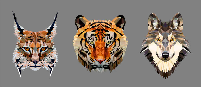 Low poly triangular tiger, lynx and wolf heads on grey background, vector illustration isolated.  Polygonal style trendy modern logo design. Suitable for printing on a t-shirt.