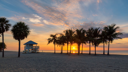Fototapete - Sunrise at palm trees by the ocean beach in Key Biscayne, Florida