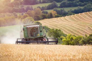 Getreide Ernte Maschine Mähdrescher Fotoväggar