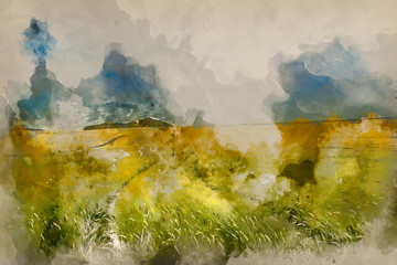 Wall Murals Honey Digital watercolour painting of Summer landscape over agricultural farm field of crops in late afternoon