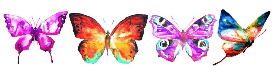 butterfly199