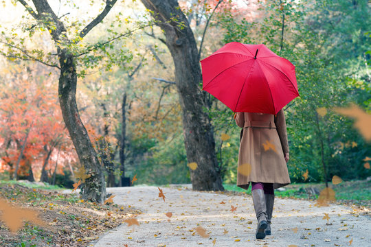 woman with red umbrella walking at the rain in beautiful autumn park