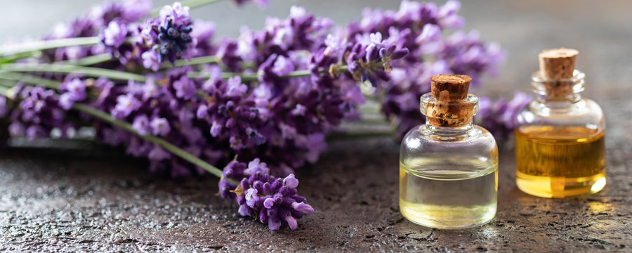 Panoramic header of essential oil bottles and lavender