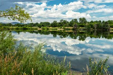 Fotobehang Pistache The Pond