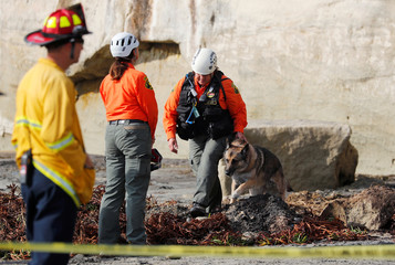 Emergency responders and a search team work at the scene of a cliff collapse at a beach in Encinitas, California