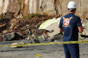 A search team works at the scene of a cliff collapse at a beach in Encinitas, California