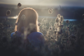 head backof red-haired girl sitting on the ground in a field among dried flowers and enjoys nature at sunset, young woman relaxing, concept of rest, healthcare, harmony, lifestyle