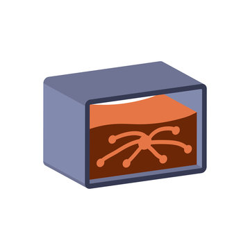 Ant farm icon.Isometric and 3D view.