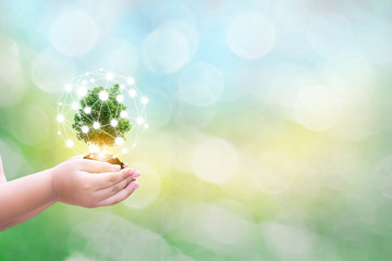 Ecology concept child human hands holding big plant tree with on blurred background world environment the concept of the world